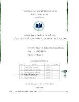 Tiểu luận môn nghiệp vụ ngân hàng thương mại báo cáo nghiên cứu đề tài tổng quan về tập đoàn tài chính ngân hàng
