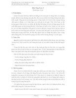Bài tập Lớn V1 BK TPHCM