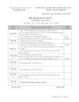 Kế hoạch tổ Tiếng Anh tuần 37