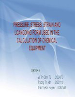 PRESSURE, STRESS, STRAIN AND LOANGDING FORM USED IN THE CALCULATION OF CHEMICAL EQUIPMENT