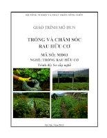 Giáo trình trồng và chăm sóc rau hữu cơ   mđ03  trồng rau hữu cơ