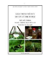 Giáo trình quản lý dịch hại   mđ04  trồng rau hữu cơ