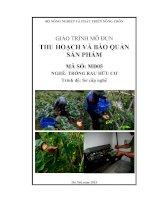 Giáo trình thu hoạch và bảo quản sản phẩm   mđ05  trồng rau hữu cơ