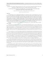 NGHIÊN cứu HOẠT TÍNH QUANG xúc tác của TIO2 FLUOR hóa BẰNG PHƢƠNG PHÁP sốc NHIỆT đối với các PHẨM NHUỘM KHÁC NHAU
