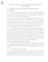 THỰC TRẠNG HOẠT ĐỘNG PHÂN TÍCH TÀI CHÍNH CỦA CÔNG TY CỔ PHẦN PHÁT TRIỂN ĐẦU TƯ CÔNG NGHIỆ PITP