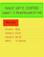 Unit 15  Countries A1-A4