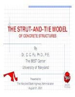 Phân tích kết cấu theo phương pháp strut and tie model