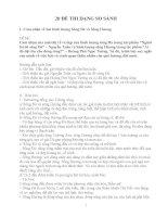 Sưu tầm 20 Đề thi Ngữ Văn 12 dạng bài So sánh