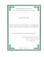 NGHIÊN CỨU XỬ LÝ THUỐC DIỆT CỎ GLYPHOSATE TRONG NƯỚC BẰNG QUÁ TRÌNH FENTON ĐIỆN HOÁ