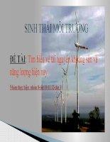 sinh thái môi trường: tìm hiểu về tài nguyên khoáng sản và năng lượng hiện nay