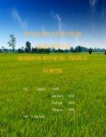 Bài thuyết trình: Thiết kế hệ thống tướitiêu nước cho cánh đồng trồng lúa xã Hòa Khánh Nam, huyện Đức Hòa, tỉnh Long An quy mô 575 ha