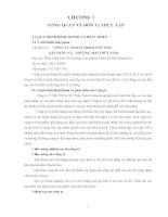 báo cáo giai đoạn 1 công ty TNHH xây dựng và thương mại thủy năm