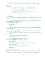 Giáo án Mĩ thuật lớp 5 soạn thep phương pháp Đan Mạch bản đẹp (Full)