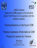 Practical examples of international CDM projects  lessons for vietnam