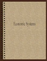 Economic systems overview