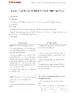 Giáo án Vật lý 8 bài 19: Các chất được cấu tạo như thế nào