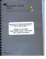 Báo cáo tài chính quý 2 năm 2014 (đã soát xét) - Công ty cổ phần Xuất nhập khẩu Thủy sản Cửu Long An Giang