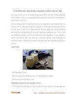 Cách làm sữa chua từ sữa công thức an toàn cho bé