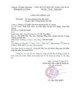 Báo cáo tài chính năm 2015 (đã kiểm toán) - CTCP Tập đoàn Khoáng sản Á Cường