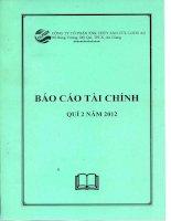 Báo cáo tài chính quý 2 năm 2012 - Công ty cổ phần Xuất nhập khẩu Thủy sản Cửu Long An Giang
