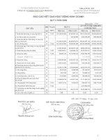 Báo cáo KQKD quý 3 năm 2009 - Công ty Cổ phần Thủy sản Mekong
