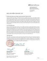 Báo cáo tài chính hợp nhất năm 2010 (đã kiểm toán) - Ngân hàng Thương mại cổ phần An Bình