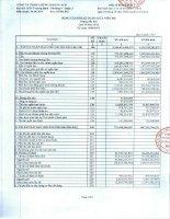 Báo cáo tài chính công ty mẹ quý 2 năm 2013 - Công ty TNHH Chứng khoán ACB