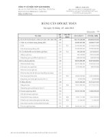 Báo cáo tài chính quý 1 năm 2012 - Công ty Cổ phần Thủy sản Mekong
