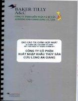Báo cáo tài chính hợp nhất quý 2 năm 2011 (đã soát xét) - Công ty cổ phần Xuất nhập khẩu Thủy sản Cửu Long An Giang