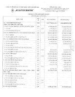 Báo cáo tài chính quý 1 năm 2013 - Công ty Cổ phần Xuất nhập khẩu Thủy sản Bến Tre
