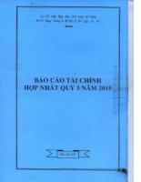 Báo cáo tài chính hợp nhất quý 3 năm 2015 - Công ty cổ phần Xuất nhập khẩu Thủy sản Cửu Long An Giang