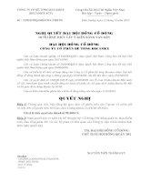Nghị quyết đại hội cổ đông ngày 06-01-2011 - Công ty cổ phần Bê tông Becamex