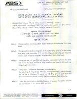 Nghị quyết Đại hội cổ đông thường niên - Công ty cổ phần Chứng khoán An Bình
