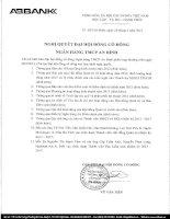 Nghị quyết Đại hội cổ đông thường niên năm 2013 - Ngân hàng Thương mại cổ phần An Bình