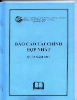 Báo cáo tài chính hợp nhất quý 3 năm 2011 - Công ty cổ phần Xuất nhập khẩu Thủy sản Cửu Long An Giang