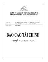 Báo cáo tài chính quý 1 năm 2014 - Công ty Cổ phần Thủy sản Mekong