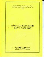 Báo cáo tài chính quý 1 năm 2015 - Công ty cổ phần Xuất nhập khẩu Thủy sản Cửu Long An Giang