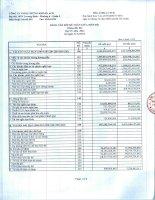 Báo cáo tài chính quý 4 năm 2012 - Công ty TNHH Chứng khoán ACB