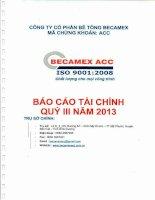 Báo cáo tài chính quý 3 năm 2013 - Công ty cổ phần Bê tông Becamex