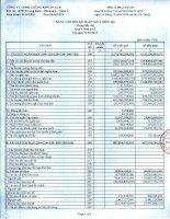 Báo cáo tài chính công ty mẹ quý 1 năm 2013 - Công ty TNHH Chứng khoán ACB