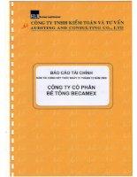Báo cáo tài chính năm 2008 (đã kiểm toán) - Công ty cổ phần Bê tông Becamex