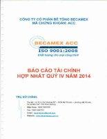 Báo cáo tài chính hợp nhất quý 4 năm 2014 - Công ty cổ phần Bê tông Becamex