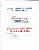 Báo cáo tài chính quý 1 năm 2014 - Công ty cổ phần Bê tông Becamex