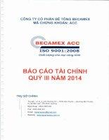 Báo cáo tài chính quý 3 năm 2014 - Công ty cổ phần Bê tông Becamex