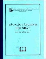 Báo cáo tài chính hợp nhất quý 2 năm 2011 - Công ty cổ phần Xuất nhập khẩu Thủy sản Cửu Long An Giang
