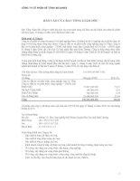 Báo cáo tài chính năm 2010 - Công ty cổ phần Bê tông Becamex