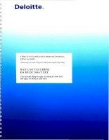 Báo cáo tài chính quý 2 năm 2013 (đã soát xét) - Công ty Cổ phần Bảo hiểm Ngân hàng Nông nghiệp