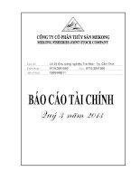 Báo cáo tài chính quý 3 năm 2013 - Công ty Cổ phần Thủy sản Mekong