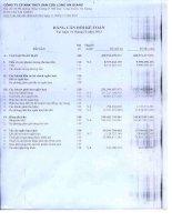 Báo cáo tài chính quý 4 năm 2013 - Công ty cổ phần Xuất nhập khẩu Thủy sản Cửu Long An Giang