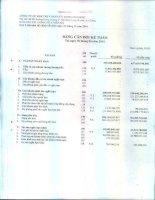 Báo cáo tài chính quý 2 năm 2014 - Công ty cổ phần Xuất nhập khẩu Thủy sản Cửu Long An Giang